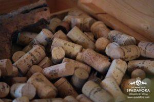 bere-vino-biologico