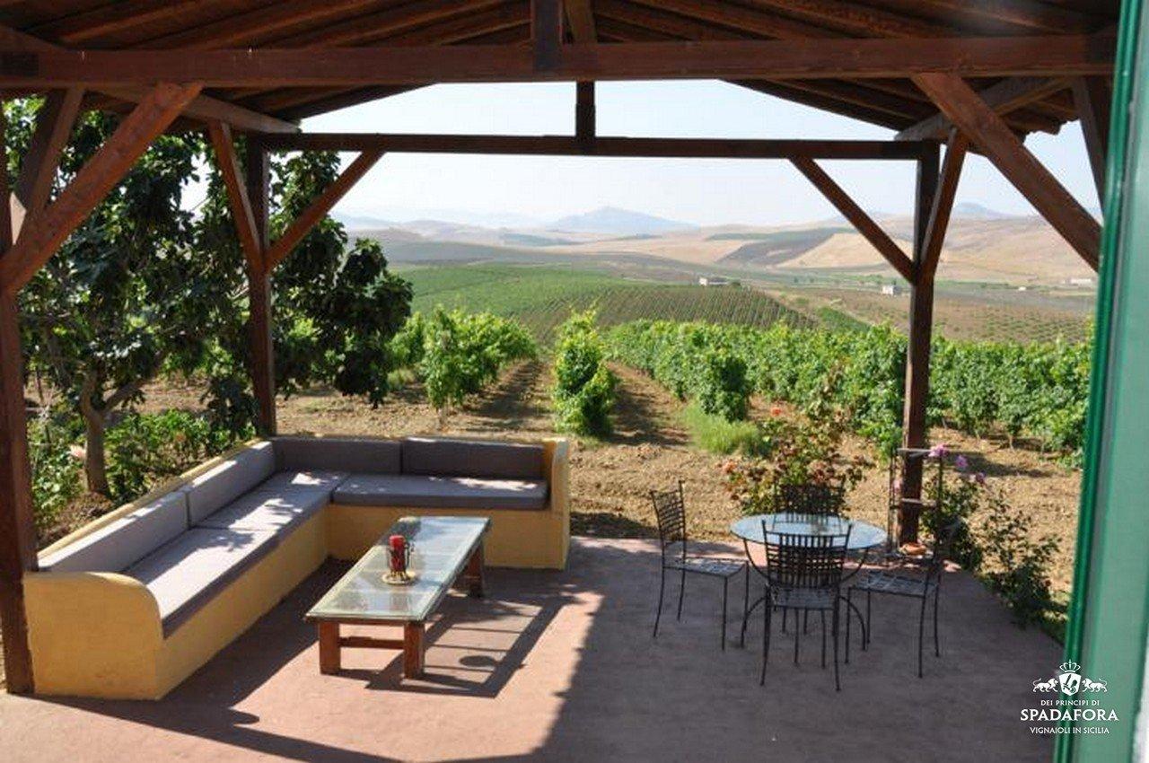 cantina produzione vino biologico