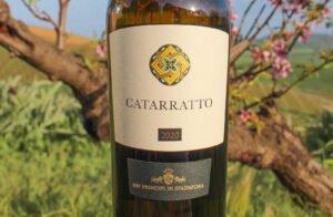 CAtarratto 2020 organic white wine